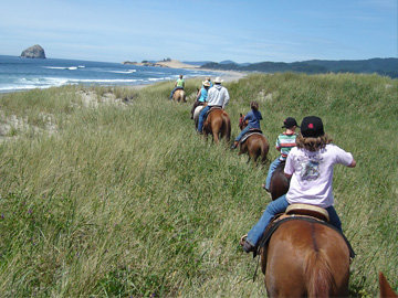 Horse on dune in Pacific City, Oregon