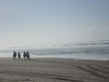 Horseback riding on beach in Pacific City