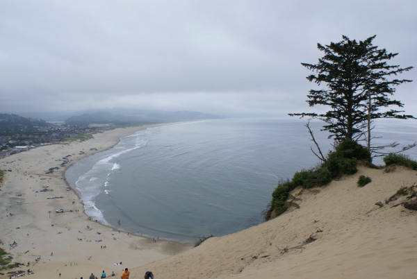 Cape Kiwanda View to south